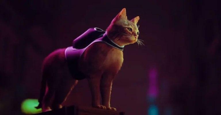 Кот из игры Stray